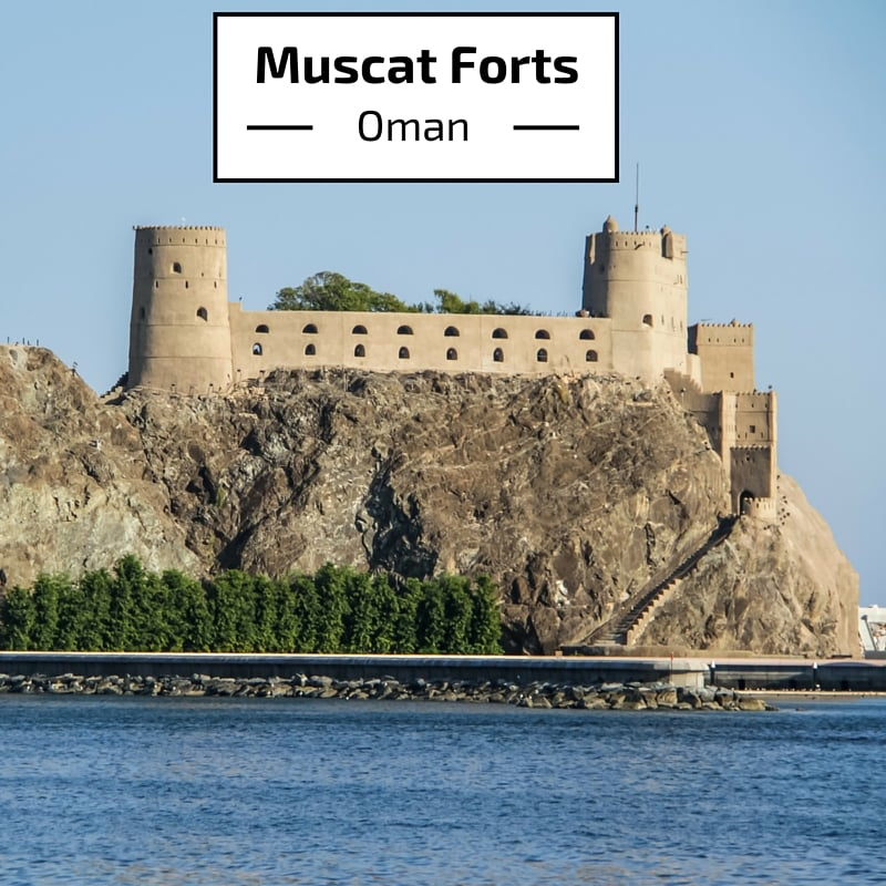 Guide and photos to plan your tour around the Muscat Al Alam Palace and its 2 forts