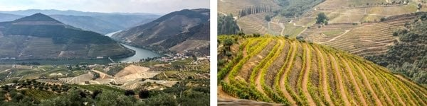 North Portugal itinerary 7 days - Day 6 DOURO